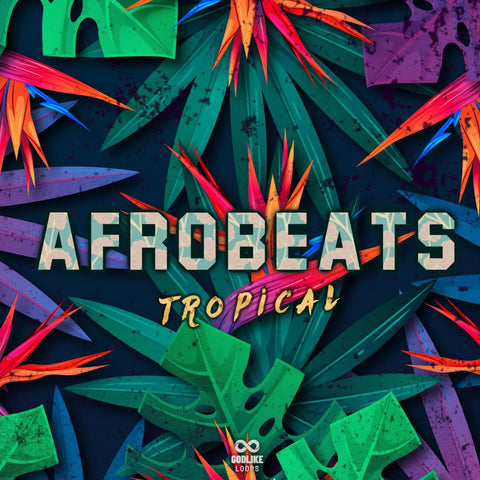 Afrobeats Tropical - Loop Kit