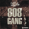 808 gang by Cartel Loops