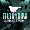 FilthyBird G-House Twerk 1 (Loop Pack)