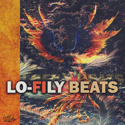 Lo-Fily Beats - Lo-Fi Hip Hop Loops