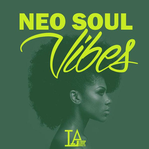 Neo Soul Vibes - Erykah Badu & Jill Scott Type Sounds