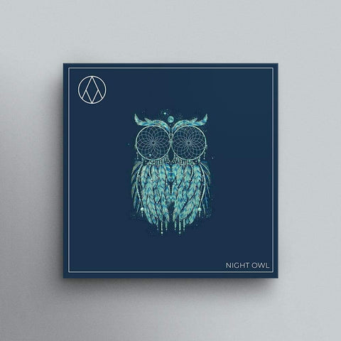 Night Owl - Trap/Hip Hop Drum Kit & Melody Loops