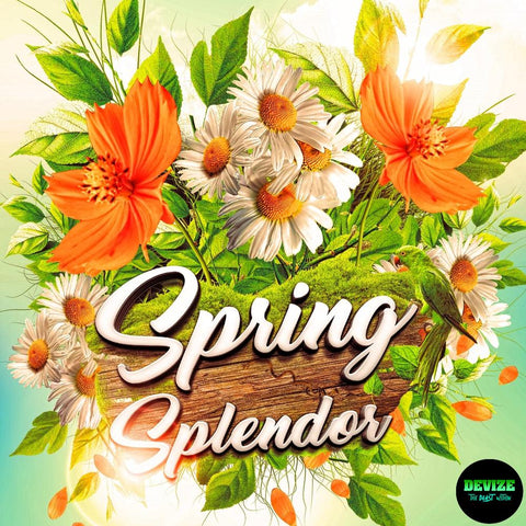 Spring Splendor Drum Kit - 100 Drum Sounds