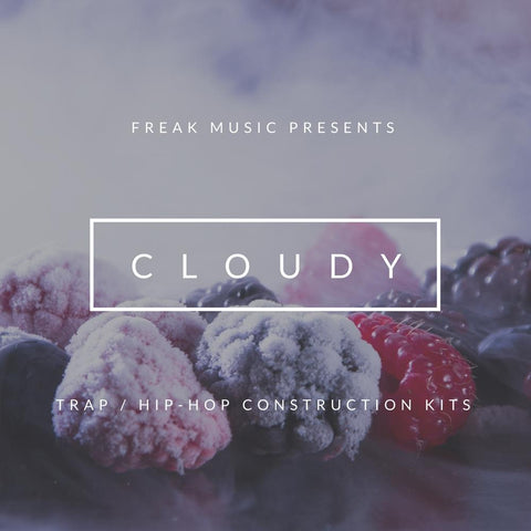 Cloudy - Construction Kit + Drum One-Shots, Loops & Presets