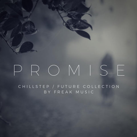 Promise - All-In-One Future Bass & EDM Collection