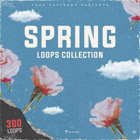 Spring Loops Bundle - 300 Loops Collection