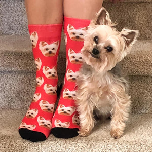 Custom Animal Face Socks 😀