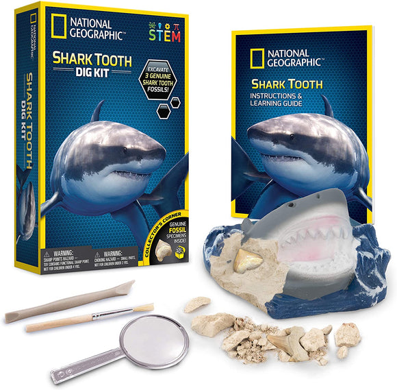 National Geographic Shark Tooth Mini Dig kit Education National Geographic