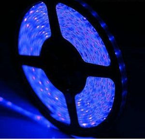 12V IP65 Waterproof 5m Flexible 600 LED Strip Light SMD 3528 2835 LED tape Ribbon Cool White Warm White Blue Red Green Yellow