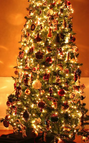 Which President Banned Christmas Trees From The White House.Christmas Trivia White House Christmas Tree Ban The