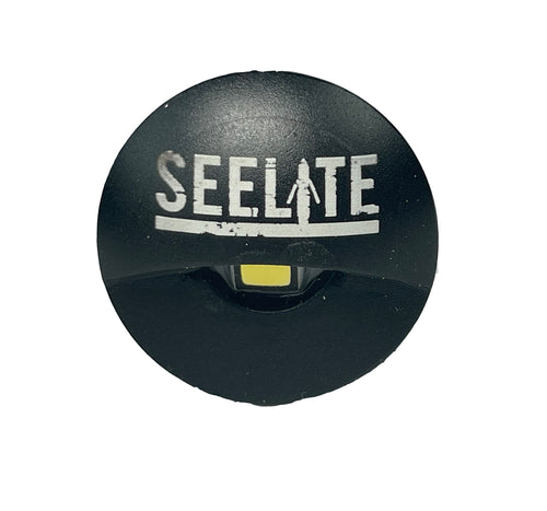 SeeLite Flush Mount hooded lights