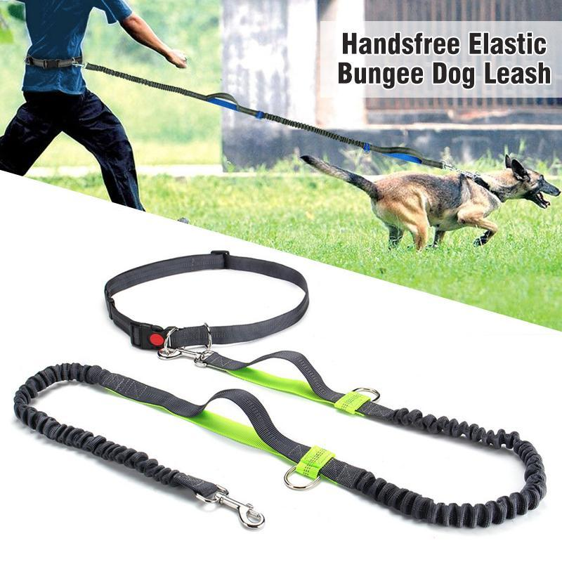 Handsfree Zero Shock Elastic Bungee Large Dog Training Running Leash