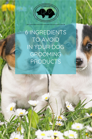 INGREDIENTS TO AVOID IN YOUR DOG GROOMING PRODUCTS