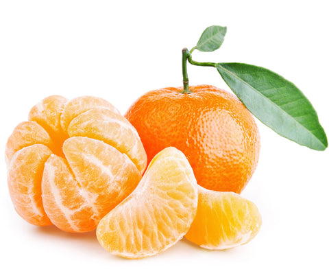 tangerine essential oil for dogs