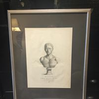 Male Bust Print 18th Century