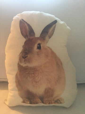 Rabbit Stuffy Canvas Pillow