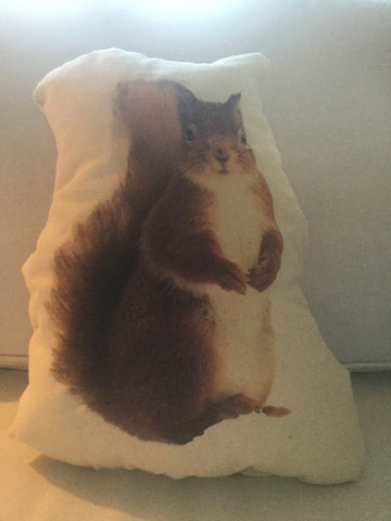 Squirrel Stuffy Canvas Pillow