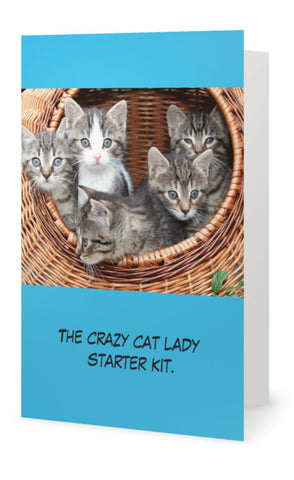 The crazy cat lady starter kit -- Birthday