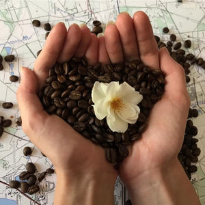 Coffee – much more than just a drink