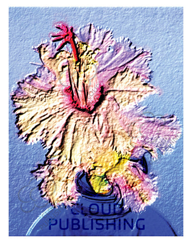 Aspen Zygocactus greeting card by Australian artist Tony Brindley and published by Cloud Publishing