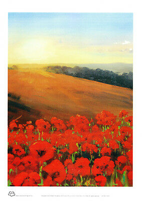 Poppy Fields in Flanders A4 decor print by Peter Hill from Cloud Publishing