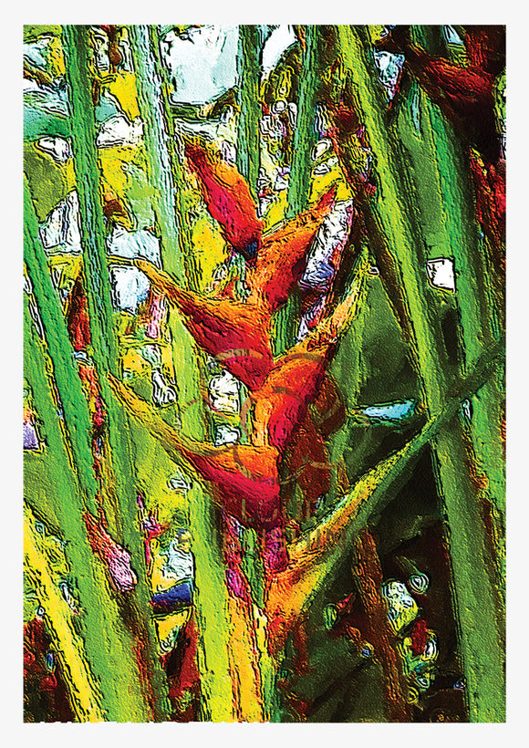 Orange crabs claw heliconia flower Greeting card from Cloud Publishing