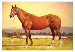 Horse greeting card of a Chestnut by Peter Hill