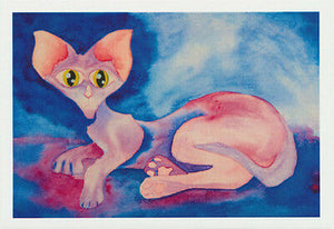 Pink cat greeting card of a hairless cat with big eyes by John Howarth and published by Cloud Publishing