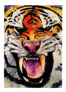 Tiger greeting card of a fierce Tiger face from an original watercolor by Glenda Gilmore and published by Cloud Publishing