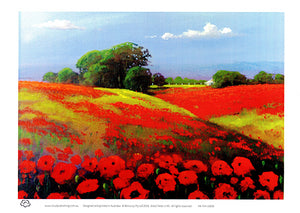 Poppy Fields of Flanders A4 unframed print by Peter Hill and published by Cloud Publishing