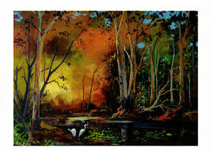 Greeting card of Egrets at play in the Barmah Forest along the Murray river by Australian artist Peter Hill and published by Cloud Publishing