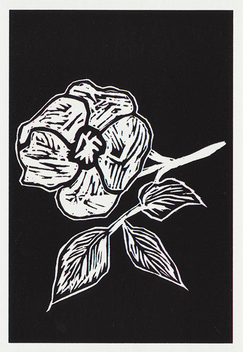 Black and white flower greeting card woodcut style from Cloud Publishing