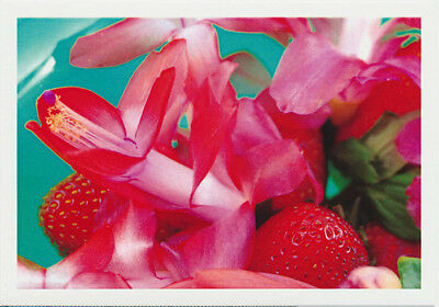 Zygocactus Strawberry Fantasy flowers mixed with real strawberries. Flower greeting card published by Cloud Publishing.