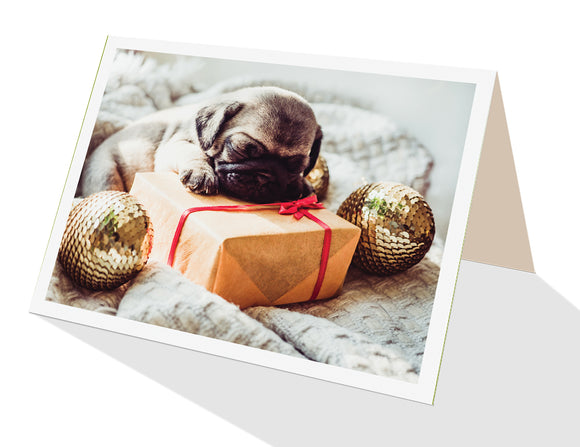Cute puppy asleep on a gift parcel ooh aah greeting card