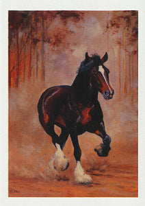 Clydesdale horse greeting card titled the Breakaway by Australian artist Peter Hill and published by Cloud Publishing