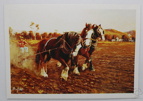 Three clydesdales plowing with dust risingbehind. A card by Australian artist Peter Hill and published by Cloud Publishing