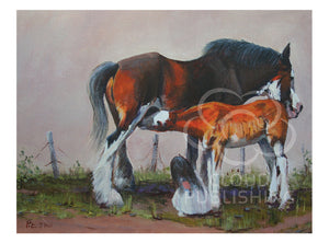 A Clydesdale foal drinking milk from his mother with a little watching fascinated. By Australian artist Peter Hill and published as a greeting card by Cloud Publishing