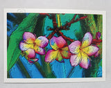 yellow pink frangipani flower trio amongst green leaves by Australian artist Tony Brindley and published as a greeting card by Cloud Publishing