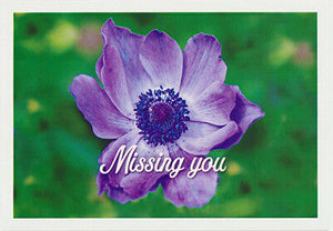 Greeting card Blue flower with Missing You narration from Cloud Publishing
