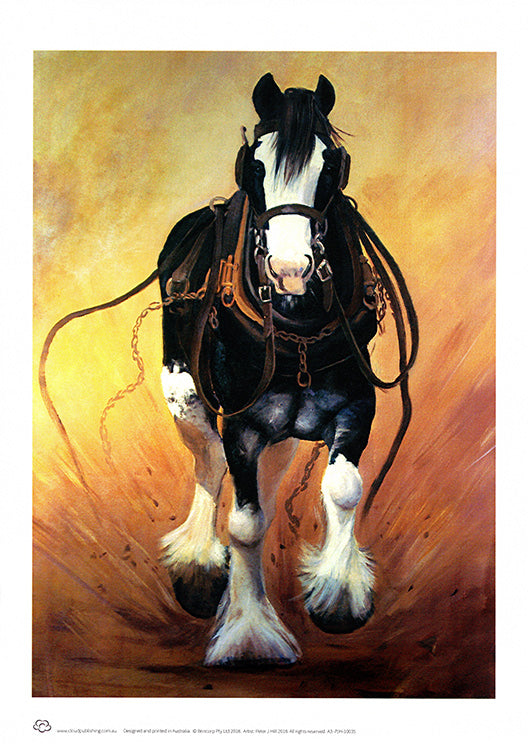 Wall Art of a running Clydesdale horse in harness + greeting card by artist Peter Hill