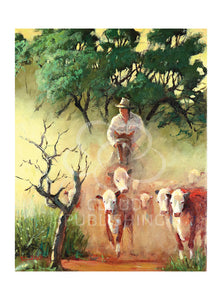 Stockman or cowboy mustering Hereford cattle by Australian artist Peter Hill and published by Cloud Publishing
