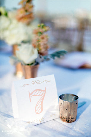 Blush, Gold Wedding Table Number