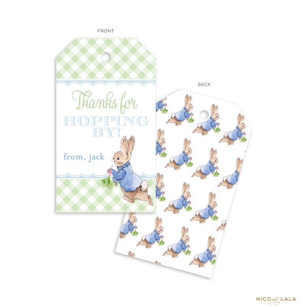 Boy Peter Rabbit Favor Tags