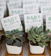 Sophisticated Succulent Shower Favor Tags