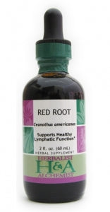 Red Root (fresh root)