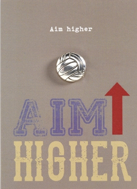 Lapel Pin - Aim Higher