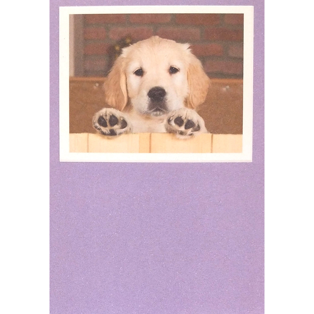 Birthday Card: Pawsitively Wonderful