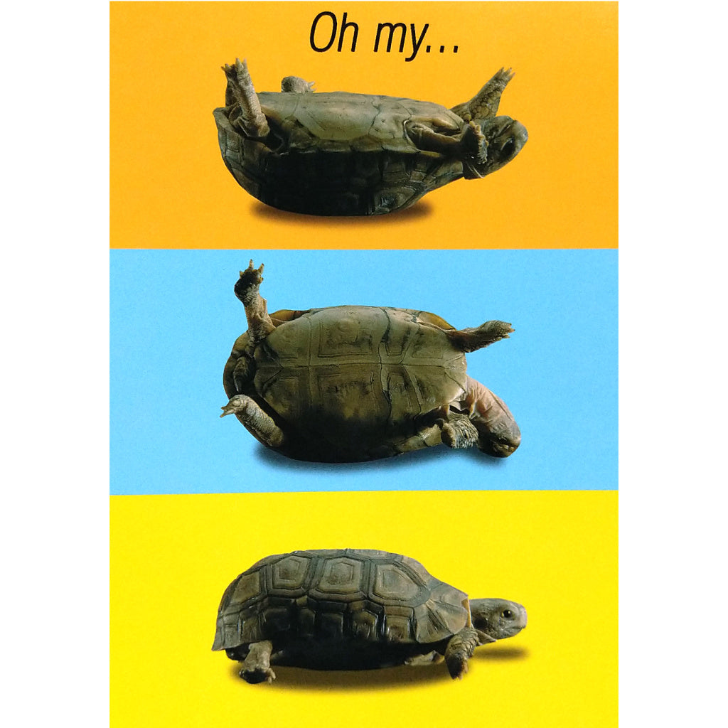 Get Well Card: Turtle