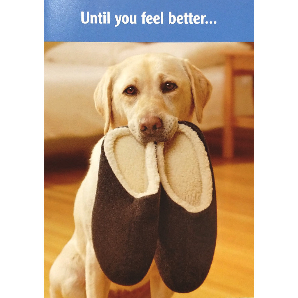 Get Well Card: Until You Feel Better