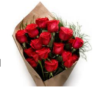 1 Dozen Red Roses in Paper Wrap